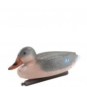 Deco Active Duck